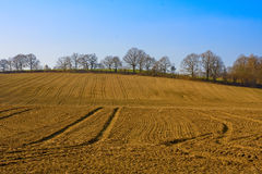 rolnictwa landspace Fotografia Royalty Free