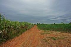 Rolnictwa pole w obszarze wiejskim Tajlandia, mieszany uprawa system zdjęcie royalty free