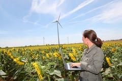 rolnictwa środowisko Zdjęcia Royalty Free