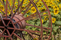 rolnictwa tło Obraz Royalty Free