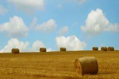 rolnictwo obraz royalty free