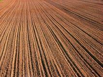 rolnictwo Fotografia Royalty Free