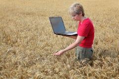 Rolnictwo, agronom egzamininuje pszenicznego pole Fotografia Royalty Free