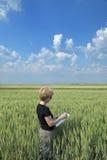 Rolnictwo, agronom w polu Zdjęcia Stock