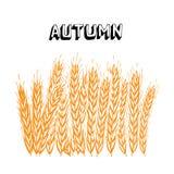 rolnictwo ilustracja Obraz Royalty Free