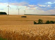 Rolnictwo krajobraz Zdjęcia Royalty Free