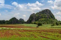 rolnictwo krajobraz Obrazy Royalty Free