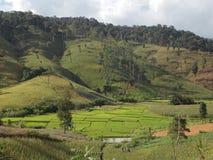 Rolnictwo na górze Zdjęcie Stock