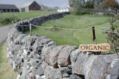 rolnictwo organicznie Fotografia Royalty Free