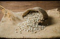 rolnictwo produkty, job& x27; s łzy Zdjęcia Stock