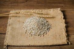 rolnictwo produkty, job& x27; s łzy Zdjęcia Royalty Free