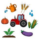 Rolnictwo przemysł i uprawiać ziemię jedzenie Obrazy Royalty Free