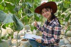 Rolnictwo przemys?, uprawia? ziemi?, ludzie i melonu rolny poj?cie, - szcz??liwa u?miechni?ta m?oda kobieta lub rolnik z schowkie obrazy royalty free