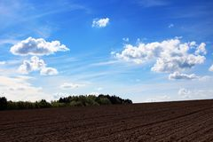 Rolnictwo - przeorzący śródpolny tło Fotografia Royalty Free