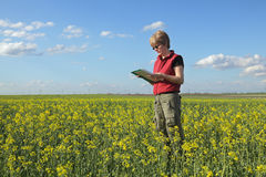 Rolnictwo, rolnik lub agronom w oilseed polu, fotografia stock