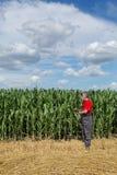 Rolnictwo, rolnik w kukurydzanym polu egzamininuje ilość używać pastylkę Zdjęcia Stock