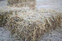 Rolnictwo rolny i uprawia ziemię symbol żniwo czas z wysuszonym g obraz royalty free