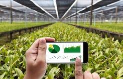 rolnictwo technologii pojęcia mężczyzna agronom Używa pastylkę wewnątrz fotografia stock