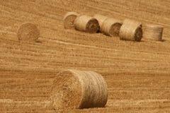 Rolnicy kończę target833_0_ Fotografia Stock