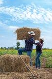 Rolnicy obsługują i kobiety pracuje w polu Obraz Stock
