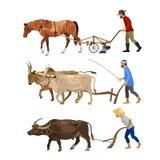 Rolnicy orzą ziemię z zwierzętami ilustracja wektor