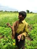 rolnicy pieśniowi obrazy stock