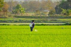 Rolnicy pracują w irlandczyka polu rozpylać użyźniacz Obraz Royalty Free