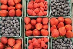 Rolnicy wprowadzać na rynek jagody Obraz Stock