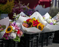 Rolnicy Wprowadzać na rynek Kwiaty obraz royalty free