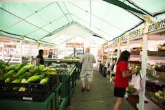 Rolnicy wprowadzać na rynek na letnim dniu w namiocie zdjęcia royalty free