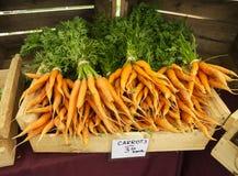 Rolnicy Wprowadzać na rynek marchewki Obrazy Stock
