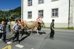Rolnicy z stadem krowy na rocznym transhumance przy Engelb Fotografia Royalty Free