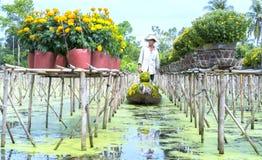 Rolnicy zbierają stokrotki i nagietka kwiatu garnki na łodziach Obraz Royalty Free