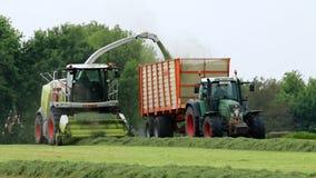 Rolnicy zbierają trawy dla winterfood, Holandia Fotografia Royalty Free