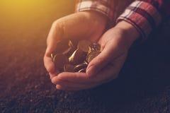 Rolnicza produktywność, pieniądze fedrunek i dochód po żniwa, obraz stock