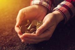 Rolnicza produktywność, pieniądze fedrunek i dochód po żniwa, fotografia stock
