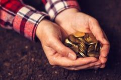 Rolnicza produktywność, pieniądze fedrunek i dochód po żniwa, zdjęcia royalty free