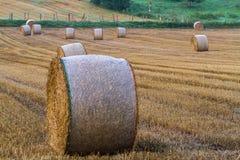 rolnicze piękne siana krajobrazu rolki Zdjęcia Royalty Free