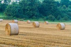 rolnicze piękne siana krajobrazu rolki Obraz Stock