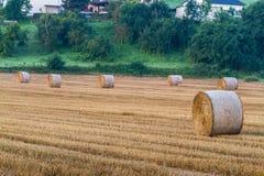rolnicze piękne siana krajobrazu rolki Obrazy Stock