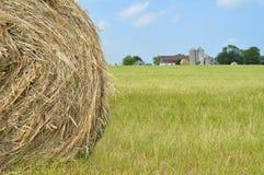 rolnicze piękne siana krajobrazu rolki Fotografia Royalty Free