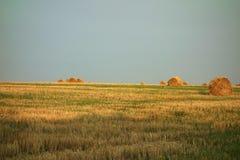 rolnicze piękne siana krajobrazu rolki Fotografia Stock