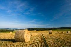 rolniczy krajobraz Obraz Royalty Free
