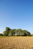 rolniczy krajobraz Obrazy Royalty Free