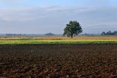 Rolniczy krajobraz, orny uprawy pole fotografia stock