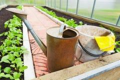 Rolniczy narzędzie stojak w szklarni Zdjęcia Stock