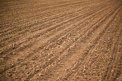 Rolniczy pole, grunt orny ziemia fotografia royalty free