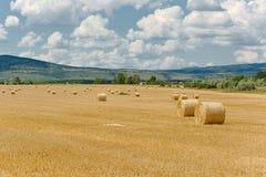 Rolniczy pole z belami Zdjęcia Royalty Free
