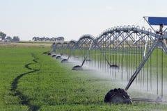 rolniczy system irygacyjny Obraz Stock
