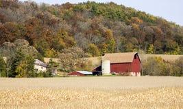Rolniczy tło Fotografia Stock